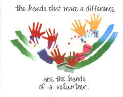 International Volunteer Day | Nellie's Blog